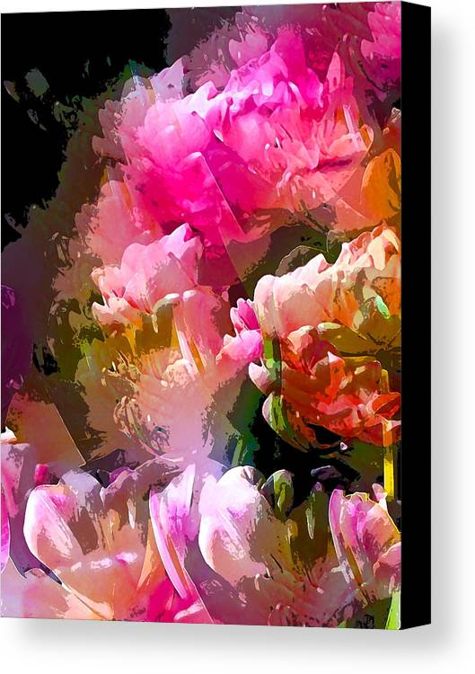 Abstract Canvas Print featuring the photograph Abstract 272 by Pamela Cooper