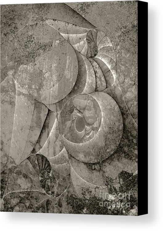 Fossilized Shell Canvas Print featuring the digital art Fossilized Shell - B And W by Klara Acel