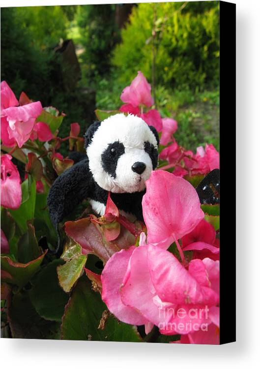 Baby Panda Canvas Print featuring the photograph Lovely Pink Flower by Ausra Huntington nee Paulauskaite