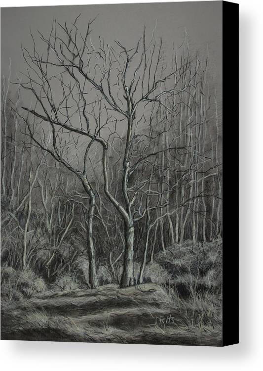 Trees Canvas Print featuring the drawing Trees Along The Greenway by Janet Felts