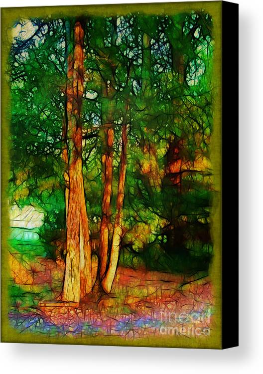 Trees Canvas Print featuring the photograph Afternoon Delight by Judi Bagwell