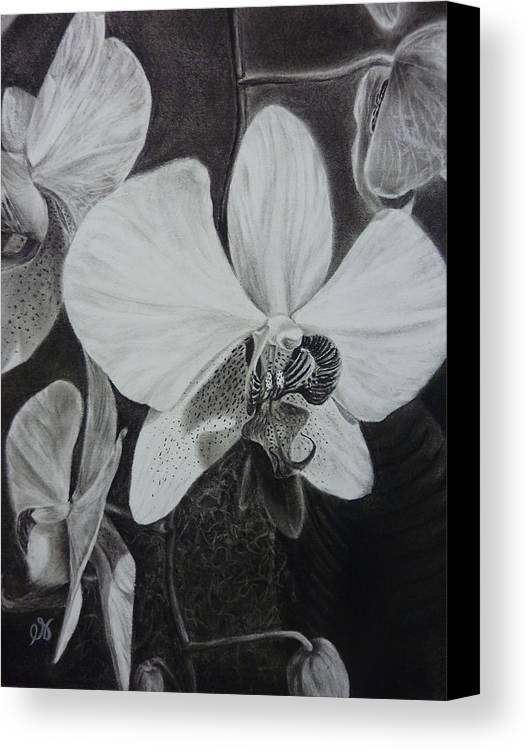 Charcoal Canvas Print featuring the drawing Cascade Of Orchidds by Estephy Sabin Figueroa