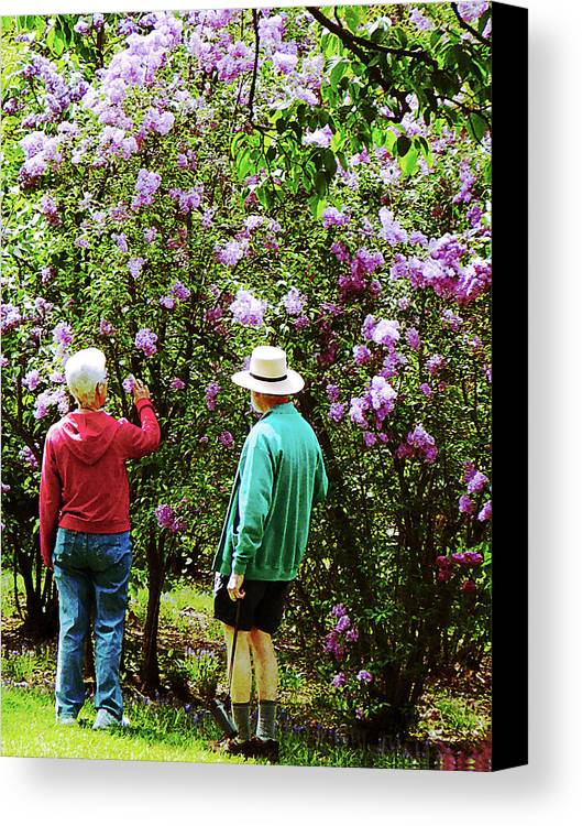 Spring Canvas Print featuring the photograph In The Lilac Garden by Susan Savad