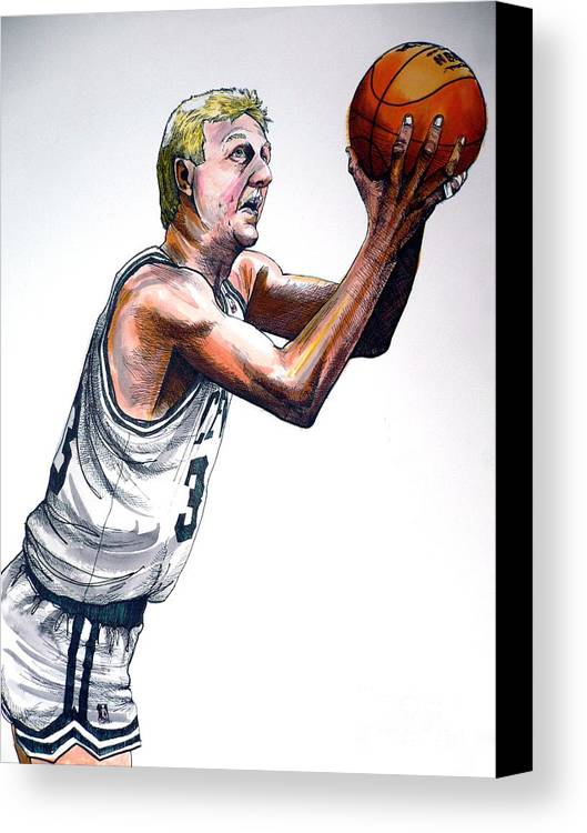 Larry Bird Canvas Print featuring the painting Larry Bird by Dave Olsen