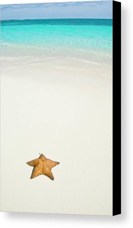 Vertical Canvas Print featuring the photograph Tropical Beach And Starfish by Mehmed Zelkovic