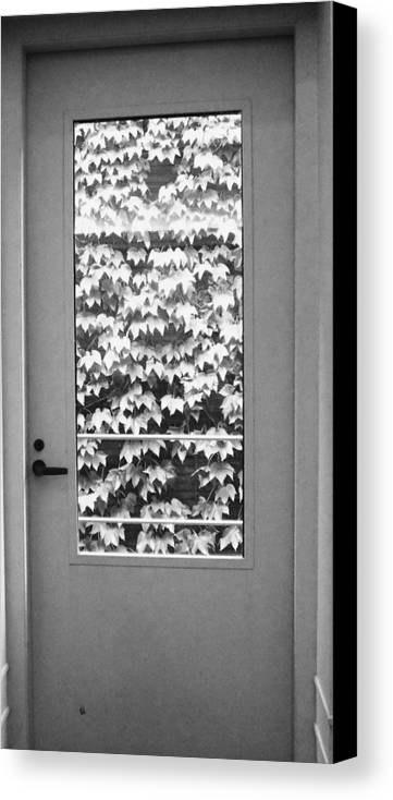 Ivy Canvas Print featuring the photograph Ivy Door by Anna Villarreal Garbis