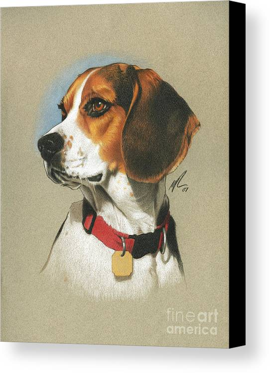 Pet Canvas Print featuring the painting Beagle by Marshall Robinson