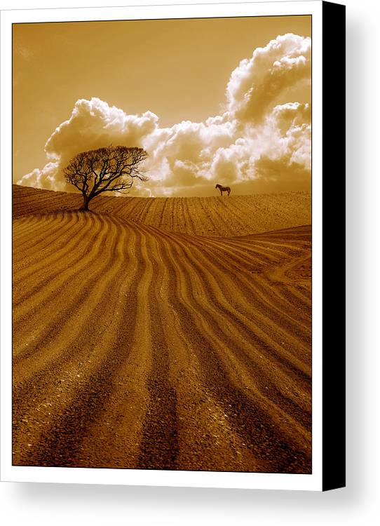 Field Canvas Print featuring the photograph The Ploughed Field by Mal Bray