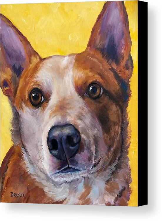 Red Heeler Canvas Print featuring the painting Australian Cattle Dog Red Heeler On Yellow by Dottie Dracos