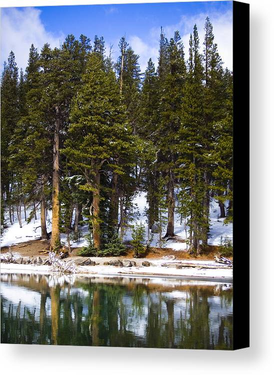 Snow Scene Canvas Print featuring the photograph Mid Day Melt by Chris Brannen
