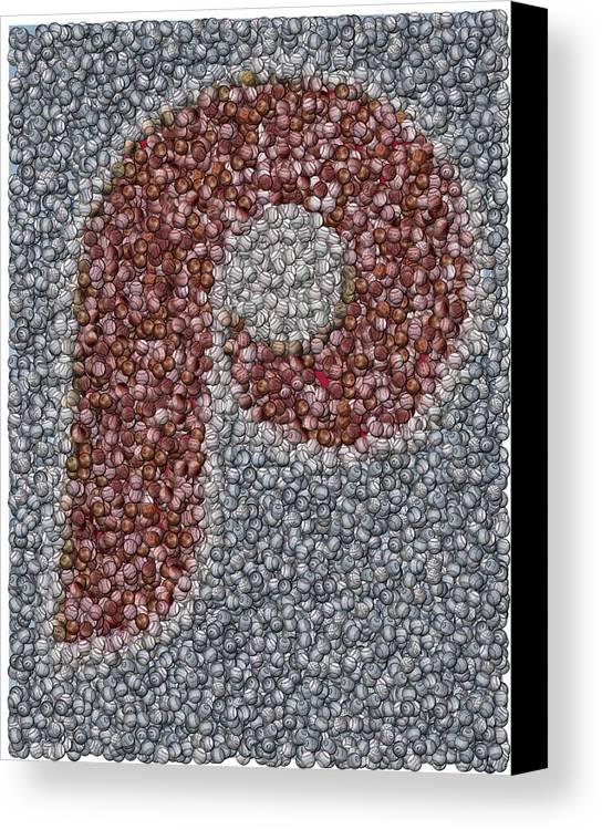 Mlb Canvas Print featuring the mixed media Philidelphia Phillies Baseballs Mosaic by Paul Van Scott