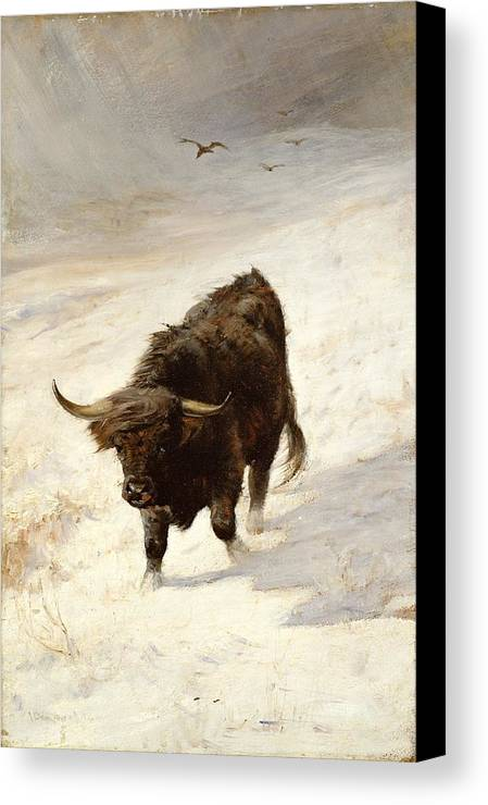 Black Beast Wanderer By Joseph Denovan Adam (1842-96) Canvas Print featuring the painting Black Beast Wanderer by Joseph Denovan Adam