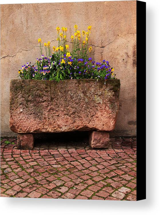 Flowers Canvas Print featuring the photograph Old Stone Trough And Flowers In Alsace France by Greg Matchick