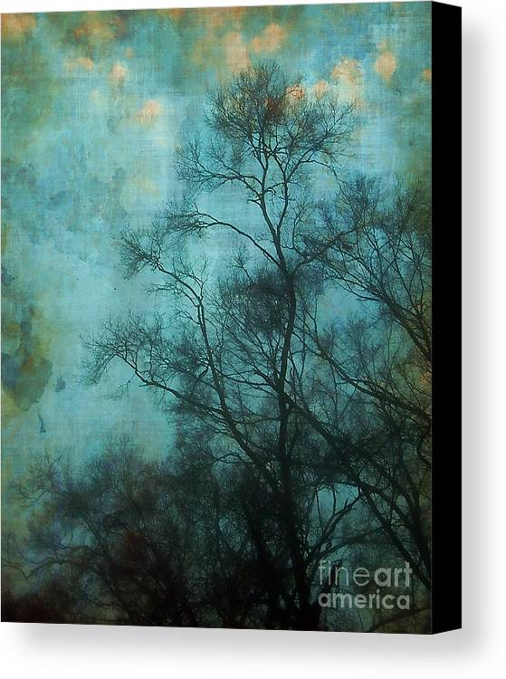 Aqua Canvas Print featuring the photograph Evening Sky by Judi Bagwell