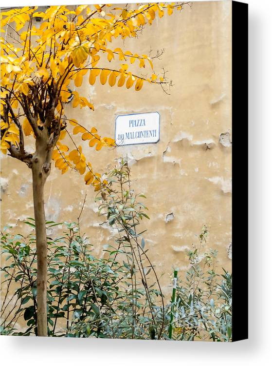 Italy Canvas Print featuring the photograph Il Piazza Malcontenti by Michael Flood