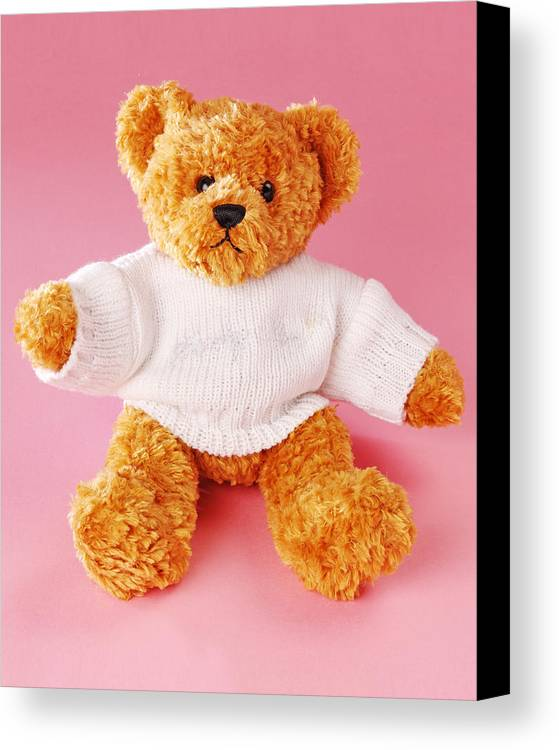 Vertical Canvas Print featuring the photograph Teddy Bear by Terry Mccormick