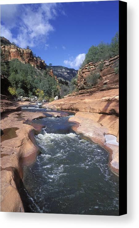 Oak Creek Canvas Print featuring the photograph Oak Creek Flowing Through The Red Rocks by Rich Reid