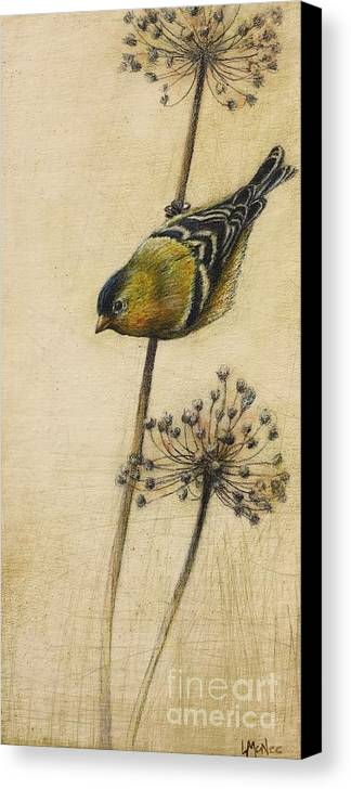 Goldfinch Canvas Print featuring the drawing Goldfinch by Lori McNee