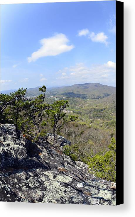 Nature Canvas Print featuring the photograph On The Edge by Susan Leggett