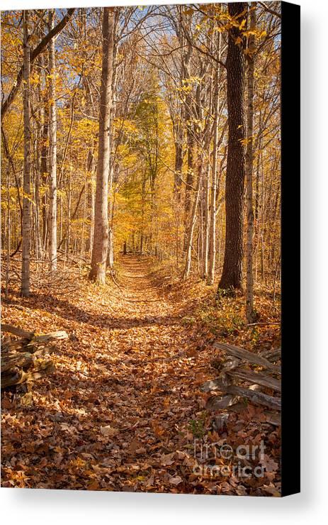 America Canvas Print featuring the photograph Autumn Trail by Brian Jannsen
