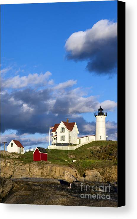 Cape Neddick Canvas Print featuring the photograph Nubble Lighthouse by John Greim