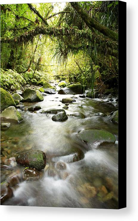 Beautiful Canvas Print featuring the photograph New Zealand by Les Cunliffe