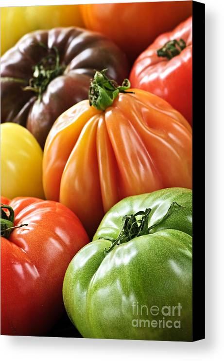 Heirloom Canvas Print featuring the photograph Heirloom Tomatoes by Elena Elisseeva