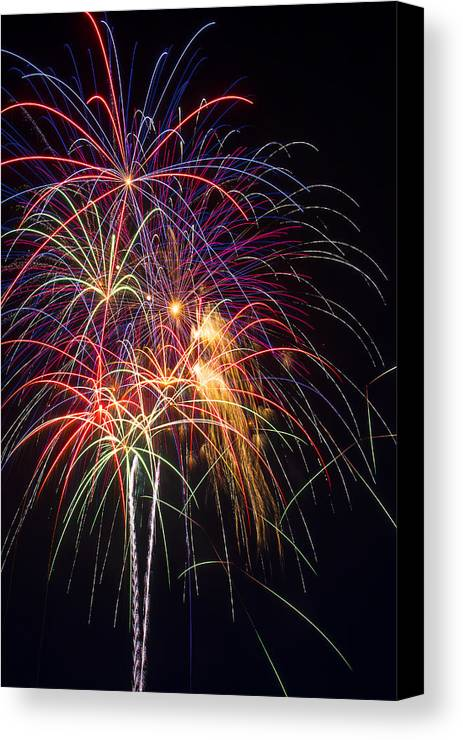 Awesome Fireworks Lights Up The Darkness Canvas Print featuring the photograph Awesome Fireworks by Garry Gay