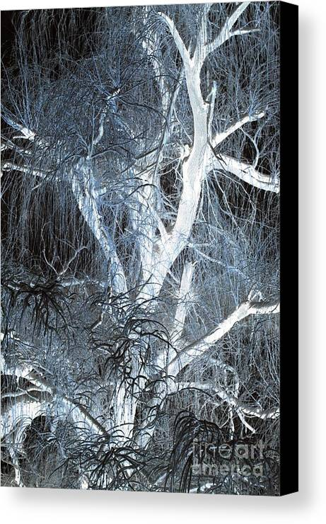 Snow Canvas Print featuring the photograph Blue Snow by Kathleen Struckle