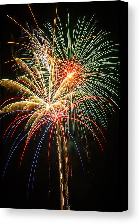 Awesome Fireworks Lights Up The Darkness Canvas Print featuring the photograph Bursting In Air by Garry Gay