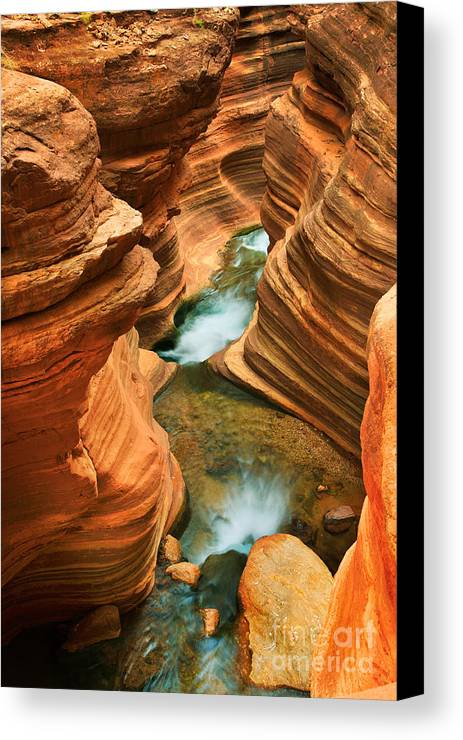 America Canvas Print featuring the photograph Deer Creek Slot by Inge Johnsson
