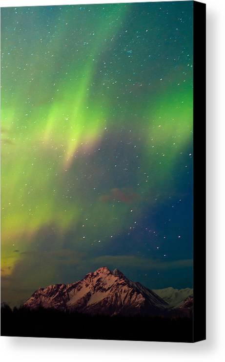 Aurora Canvas Print featuring the photograph Filled With Aurora by Ron Day
