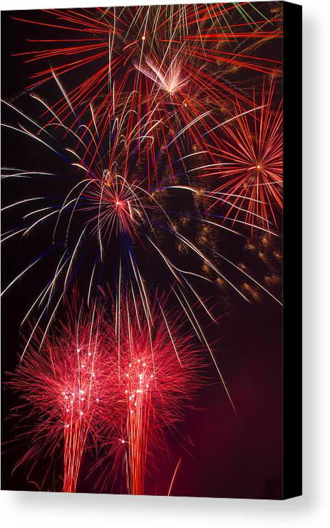 Awesome Fireworks Lights Up The Darkness Canvas Print featuring the photograph Firework Majesty by Garry Gay