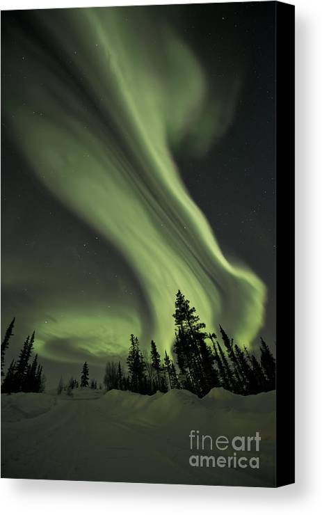 Aurora Borealis Canvas Print featuring the photograph Light Swirls Over The Midnight Dome by Priska Wettstein