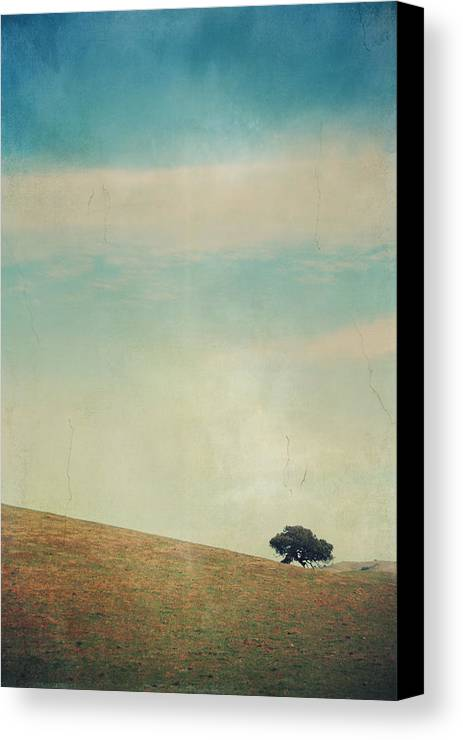 Landscapes Canvas Print featuring the photograph Love Your Own Company by Laurie Search