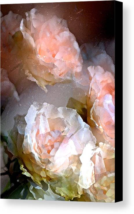 Floral Canvas Print featuring the photograph Rose 154 by Pamela Cooper