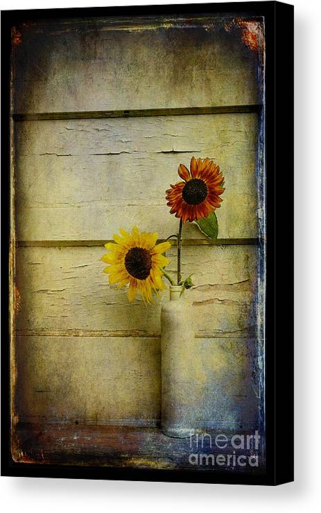 Sunflowers Canvas Print featuring the photograph Summer Sunflowers by Sari Sauls