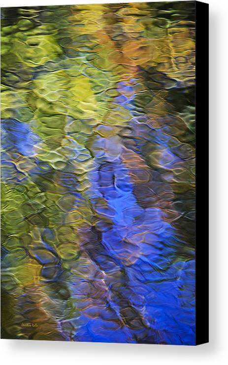 Abstract Canvas Print featuring the photograph Tangerine Twist Mosaic Abstract Art by Christina Rollo