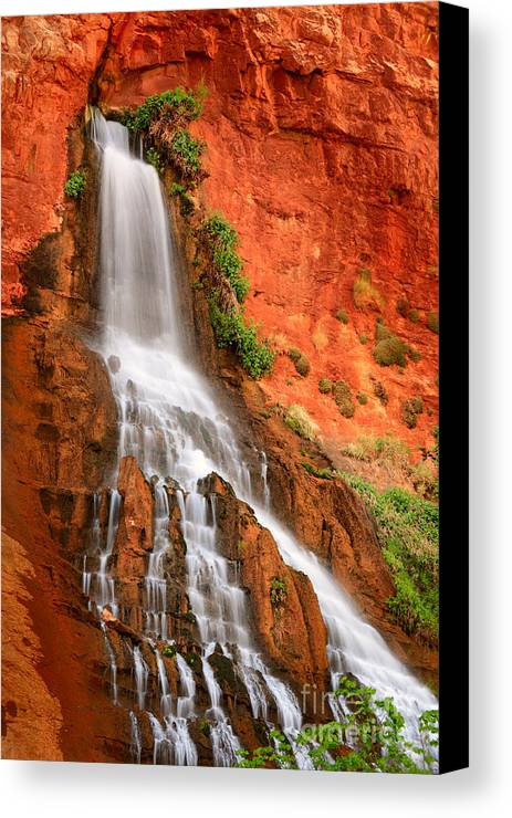 America Canvas Print featuring the photograph Vaseys Paradise by Inge Johnsson