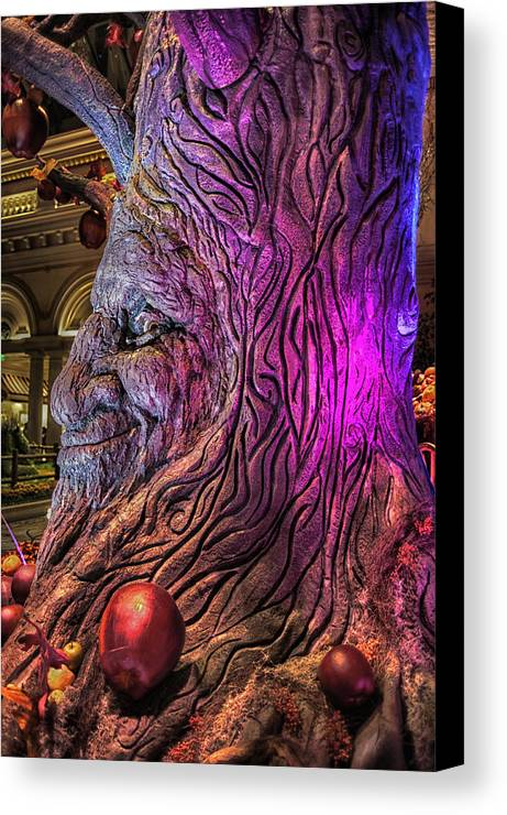 Architecture Canvas Print featuring the photograph Heres Lookin At You by Stephen Campbell