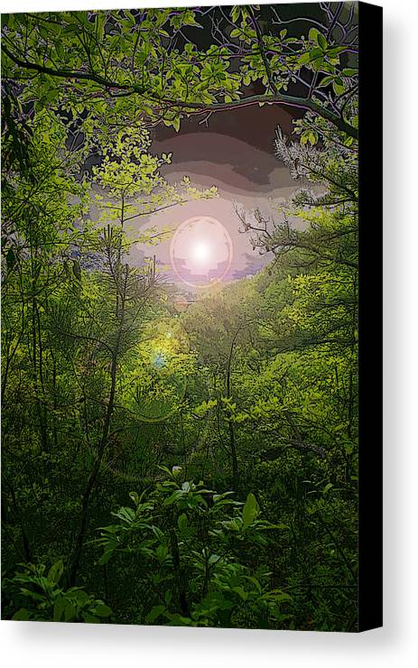 Pm Canvas Print featuring the photograph Paradise At Dawn by Nina Fosdick
