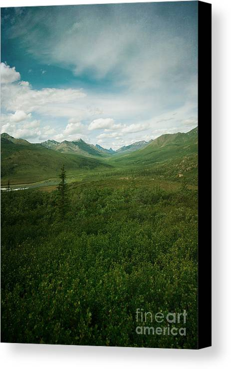 Ccmountain Canvas Print featuring the photograph Tombstone Mountain by Priska Wettstein