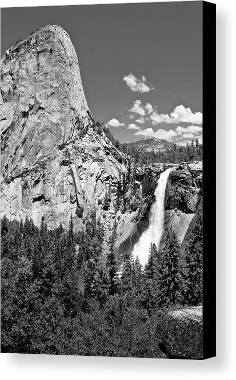 Vertical Canvas Print featuring the photograph Awesome! by George Imrie Photography