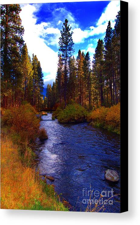 Diane Berry Canvas Print featuring the photograph Evening Hatch On The Metolius River Photograph by Diane E Berry