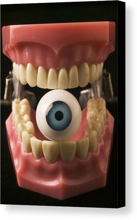 Eye Canvas Print featuring the photograph Eye Held By Teeth by Garry Gay