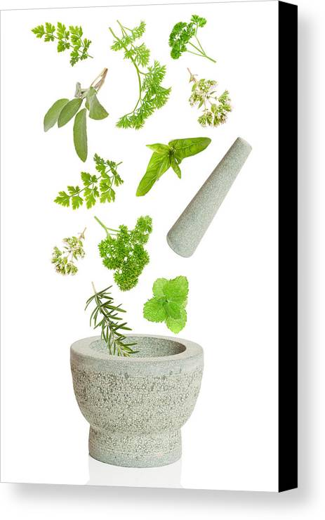 Pestle Canvas Print featuring the photograph Falling Herbs by Amanda Elwell