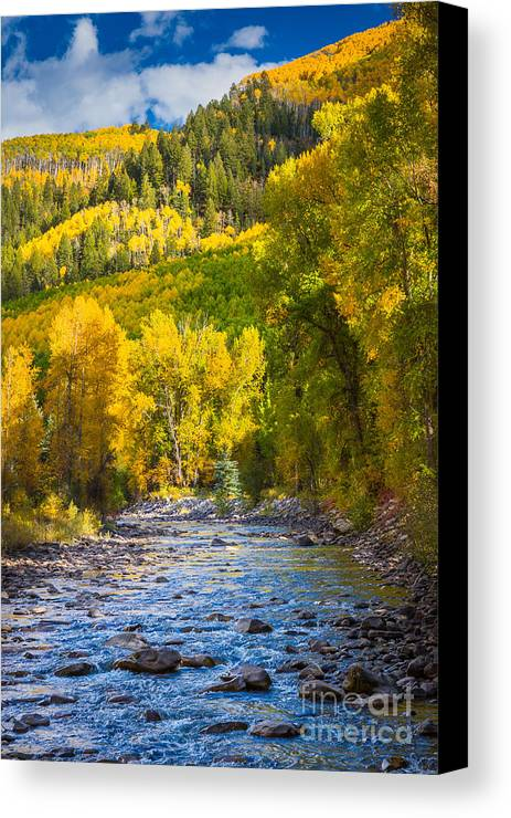 America Canvas Print featuring the photograph River And Aspens by Inge Johnsson
