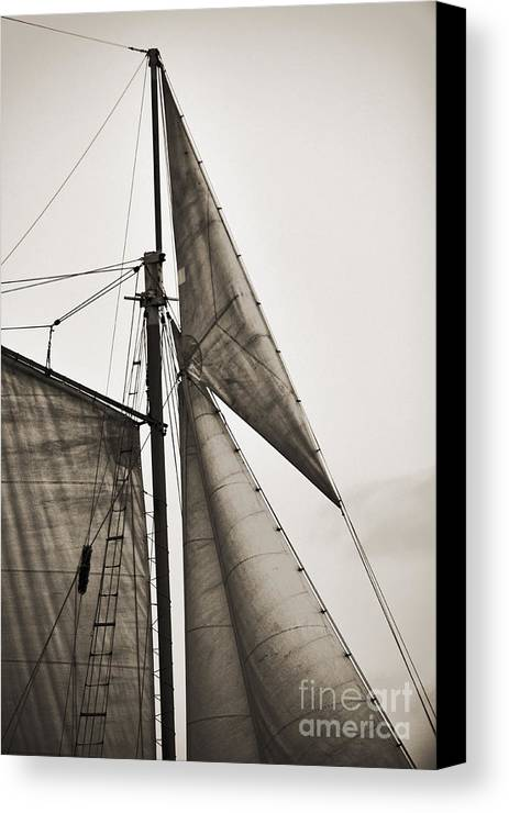 Tall Ship Canvas Print featuring the photograph Schooner Pride Tall Ship Yankee Sail Charleston Sc by Dustin K Ryan