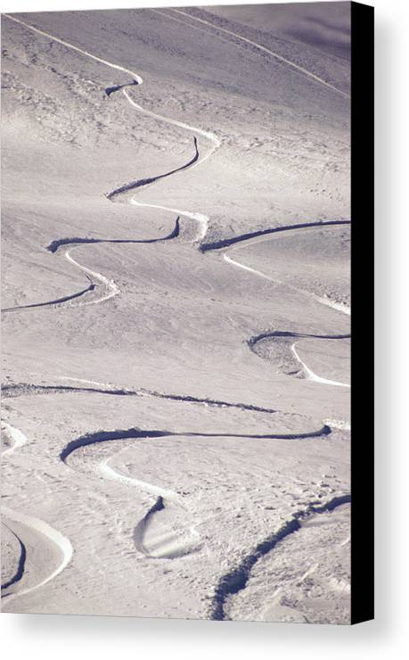 Vertical Canvas Print featuring the photograph Skiing Tracks by John Foxx