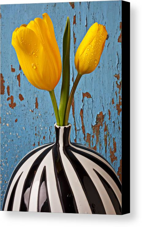 Two Yellow Canvas Print featuring the photograph Two Yellow Tulips by Garry Gay